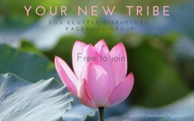 The SOS Clutter Disruptors support group